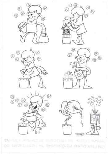 Roślina najlepszym przyjacielem człowieka