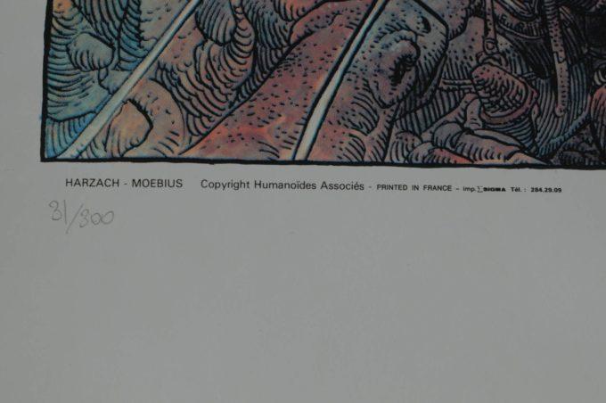Harzach - numerowana i sygnowana wielkoformatowa serigrafia kolor