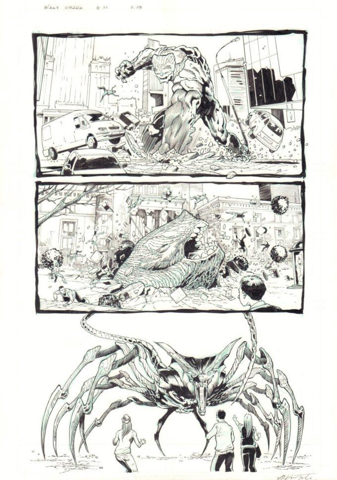 Biały Orzeł #11 / 13